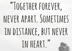 citate celebre in engleza despre dragoste Dragoste la distanță  24 de citate pentru fiecare oră de dor nebun  citate celebre in engleza despre dragoste