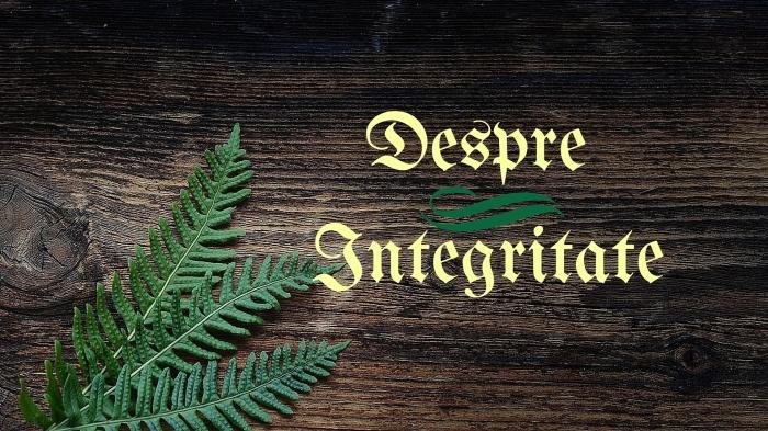 Despre Integritate
