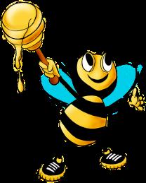honey-bee-469560_640.png
