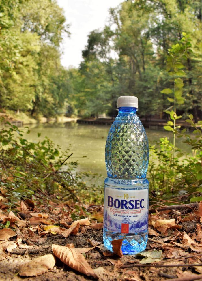 borsec 5