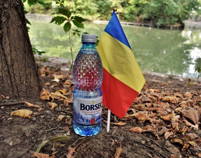 borsec 6