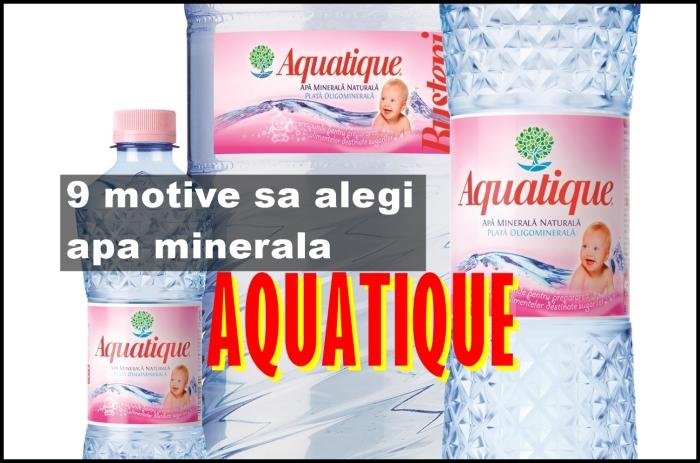 aquatique-1.jpg